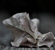 ....fallen fragility.... by Russ Styles