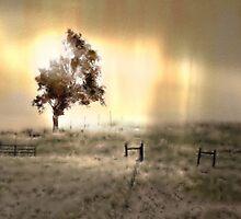 Morning Breath by CarolM