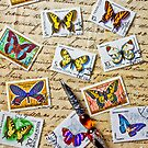 Butterfly stamps and old document by Garry Gay