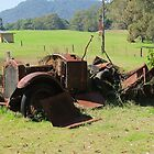 Put Out To Pasture by Michael John
