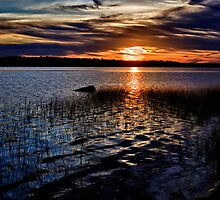 """Sunset On St. Mary""""s Bay by Kathy Weaver"""