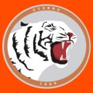 Clemson Tigers by kmtnewsman