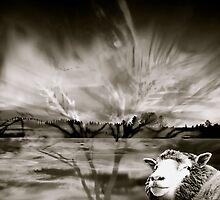 Scandanavian sky by walunas