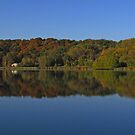 Morning on Indian Lake by swaby