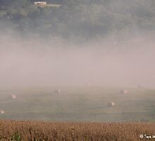 Hay Bales and Fog by BarbWireNRoses