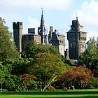 Cardiff Castle by Artberry