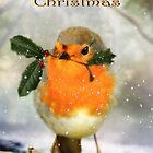 The Robin's Wish by Trudi's Images