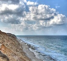 Beach view with dramatic sky by Ori Akstein