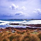Hawley Surf, Canon IXUS 50 by cschurch