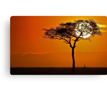 The Majesty of Morning Canvas Print