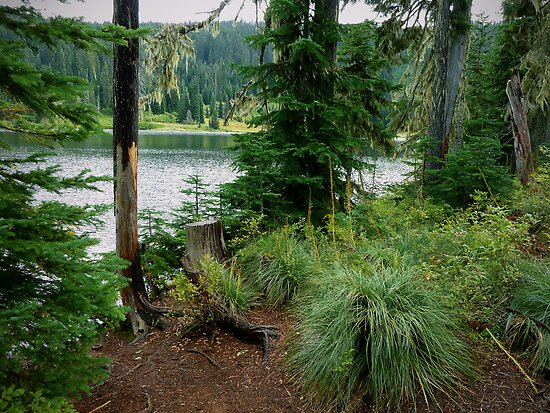 Blair Lake ~ Oregon Cascades ~ by Charles & Patricia   Harkins ~ Picture Oregon