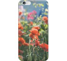 Evening Lights the Poppies iPhone case iPhone Case/Skin