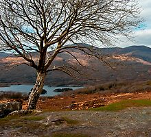 kerry hills by ioncarp