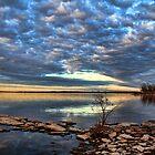 Cloudscape 2 by Carolyn  Fletcher