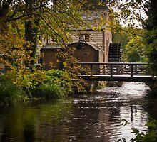 Waterwheel Snuff Mill - Morden Hall, London.  by DonDavisUK