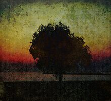 Sunset. Tree. Sea. by tutulele