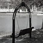 I-Phone:  Lonely Swing, Sitting Empty by Holly Runyon