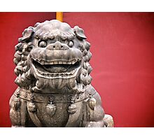 red lion Photographic Print