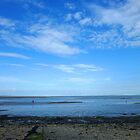 Severn Estuary at Penarth by Artberry