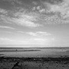 Severn Estuary at Penarth (B&W) by Artberry