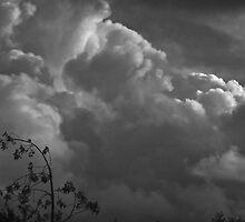 Threatening Sky by heatherfriedman