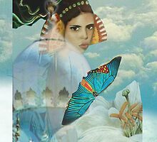 Butterfly Dreams by Cate Townsend