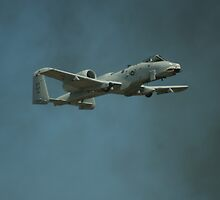 A-10 WARTHOG FROM HELL by Rick Bott