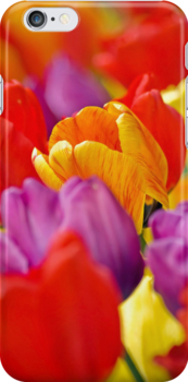 Floating In A Sea Of Color iPhone case. by Todd Rollins
