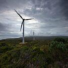 Wind Farm - Albany Western Australia by Chris Paddick
