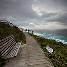 View Over Sandpatch - Albany Western Australia by Chris Paddick
