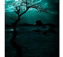 Midnight Sun iPhone Case by Andrew Paranavitana