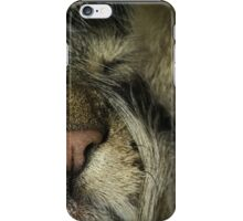 House Tiger II - portrait phone cover case sleeping relaxing tiny iPhone Case/Skin