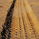 Sand Tracks - iPhone Cover by Richard Owen