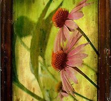 Antiqued Cone Flowers - iPhone Case by Lois  Bryan