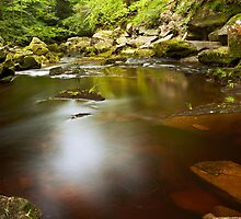 Mallyan Spout Pool by Andy Freer
