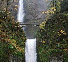 Beautiful Multnomah falls in Autum by Payne24