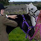 Hay bags by rosie320d