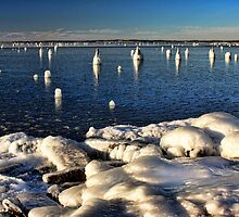 Shoreline Ice Incident by Carolyn  Fletcher