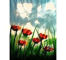 Pink Poppies on a cloudy day, watercolor Photographic Print