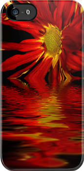 iphonebleeding flower by Angela King-Jones