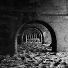 Arches by Patrick Noble