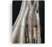 Tree Alchemy Canvas Print