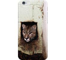 iphone case Puma portrait iPhone Case/Skin