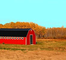 Ye Long Red Barn by Larry Trupp