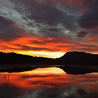 reflection in red - sunrise at the dam by Martina  Stoecker