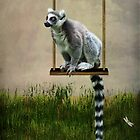 The Lemur Swing by Lissywitch