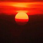 Celestial Series: Sunrise by Mary Ann Reilly