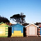 Brighton bathing sheds panorama by madcowgirl