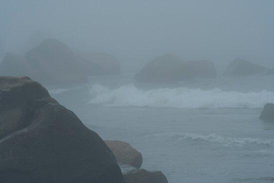 A Blanket Of Fog  by Darlene Ruhs
