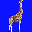 Giraffe by Kezzarama